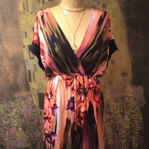 Dresses & Skirts - Stunning Maxi Dress by Rhapsody Size 3X